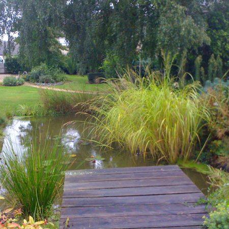 bassin (2)