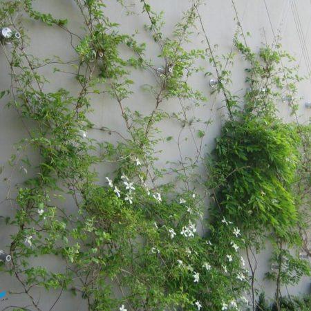 leblois-environnement-paysagiste-normandie-caen-calvados-005
